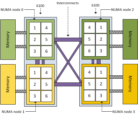 dual processor AMD 6100 magny-cours system and NUMA node architecture